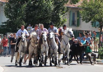 Saint-Eloi, taureaux dans les rues