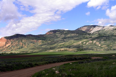 Jackson, Wyoming and Yellowstone Areas