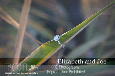Elizabeth and Joe