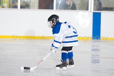 Snowbelt Tournament: E Aurora 1 vs. E Aurora 2 Squirt 1-27-13