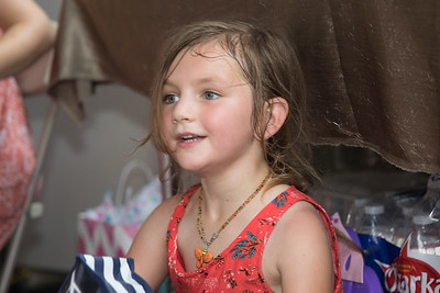 2017 - Kate Weber - 5th Birthday Party - June 19, 2017