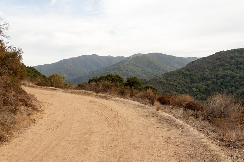 Hiking Path @ Almaden Quicksilver