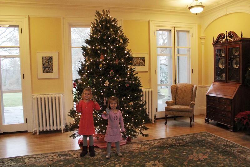 Ornaments-Choate House 061.JPG