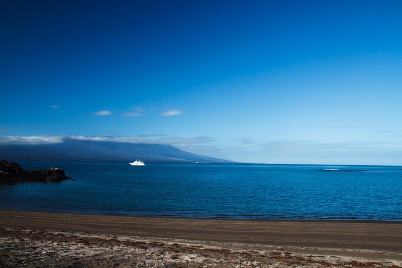 Playa Tortoga Negra, Isabela, Galapagos (11-24-2011)-5.jpg