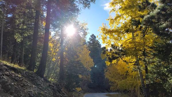 2018 Arizona Fall