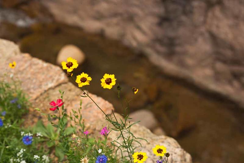 Colorado Springs-95.jpg