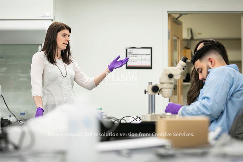 Neuroscience Lab.  Photo by:  Ron Aira/Creative Services/George Mason University