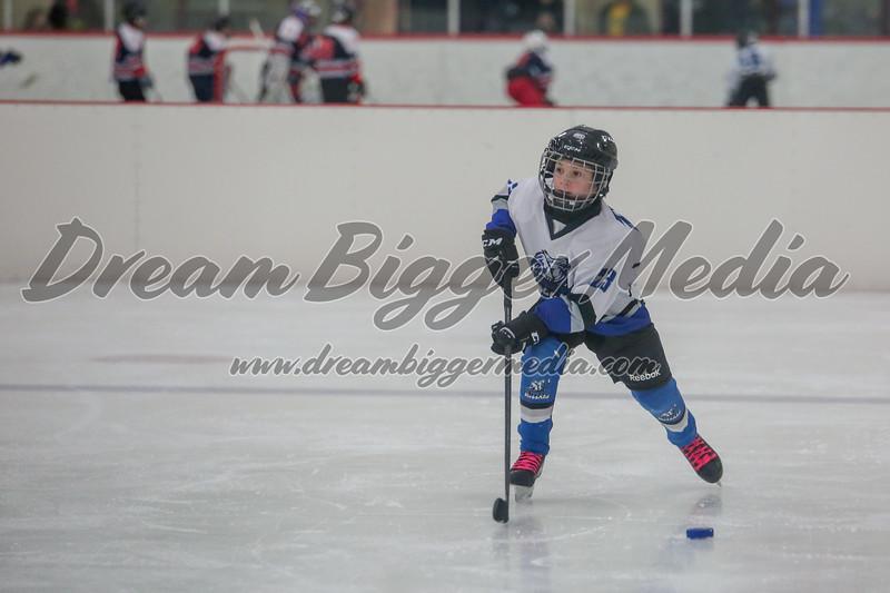 Blizzard Hockey 111719 6986.jpg