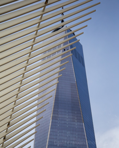 LowerManhattan-0870.jpg