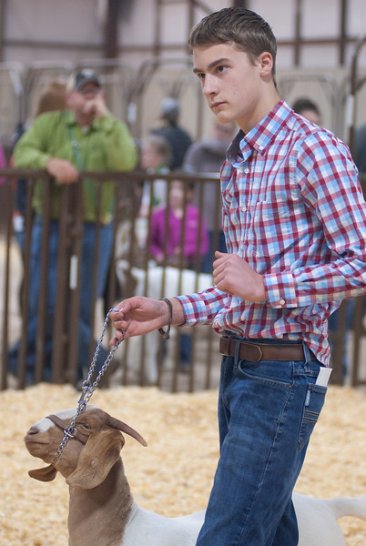 kay_county_showdown_goats_20191207-170.jpg