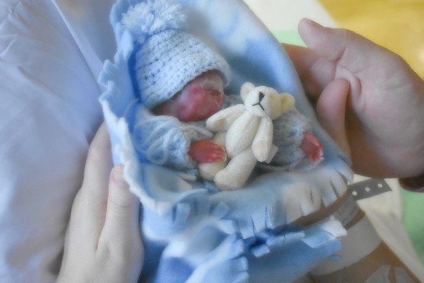 Baby Alex Lucas