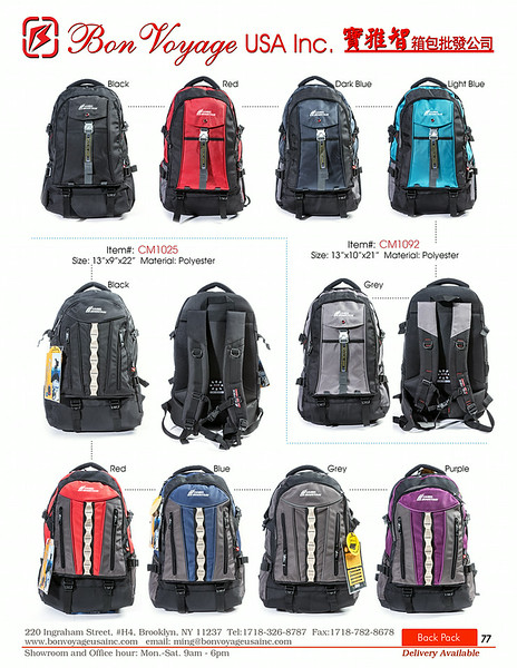 BackPack p77-X2.jpg