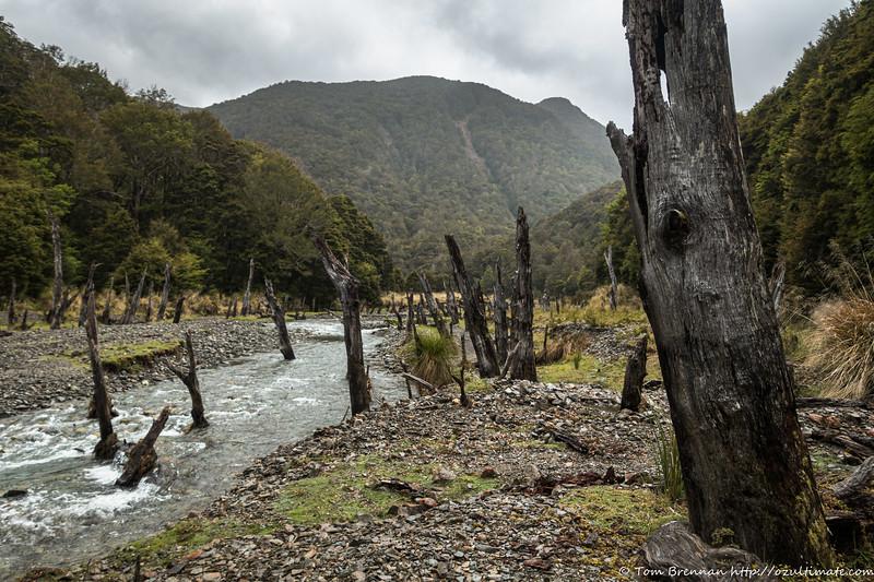 Upper Karamea River