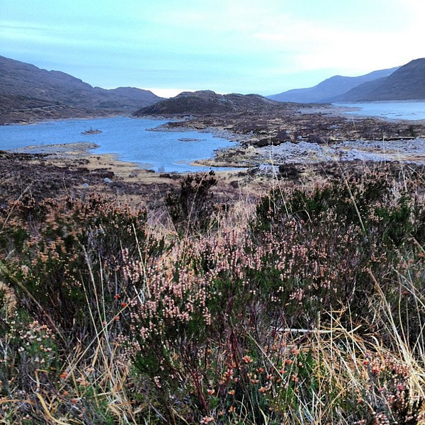 Loch Cluanie, the road bends in the brush. #Scotland #blogmanay