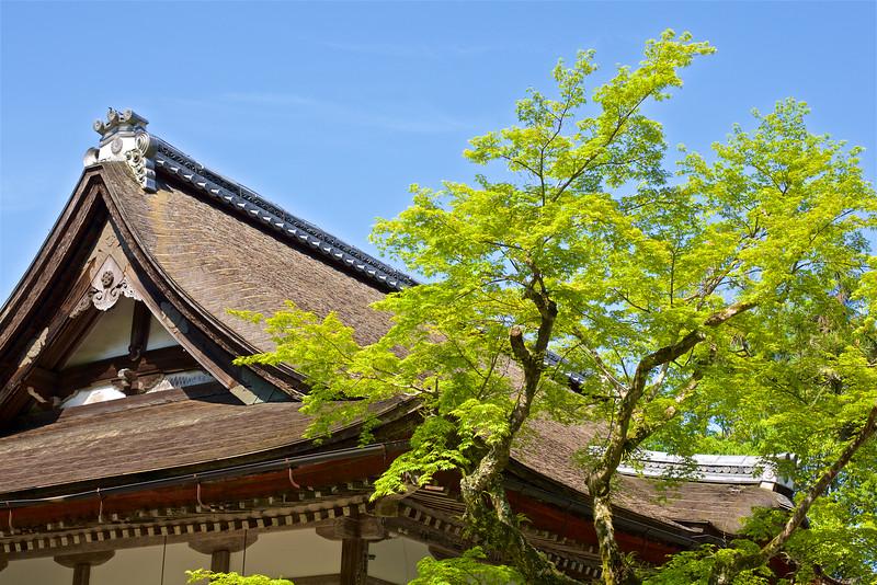 Kyotographer-D.-Moritz-Marutschke-Hiyoshi-taisha 1.jpg