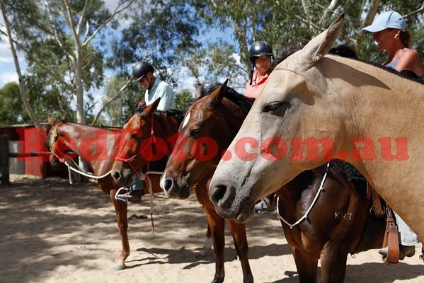 2014 02 22 Natural Horsemanship Clinic Louise Ratcliffe