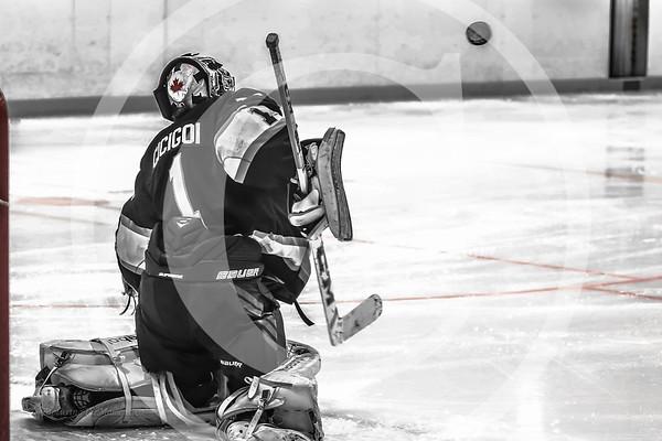 Game 15: Thunder Bay Kings Vs Sudbury Technica Wolves