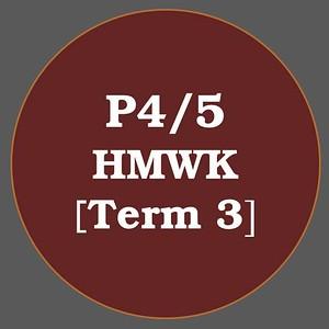 P4/5 HMWK T3