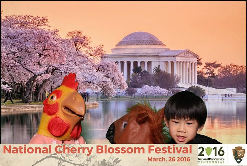 Boothie-NPS-CherryBlossom- (350).jpg