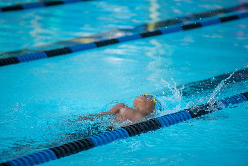 lcs_swimming_kevkramerphoto-222.jpg