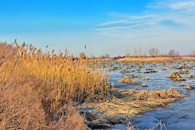 Marsh Low Tide at Sundown