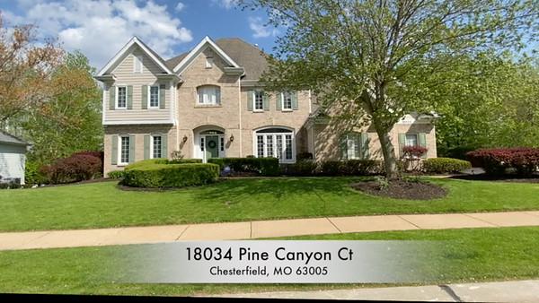18034 Pine Canyon Ct