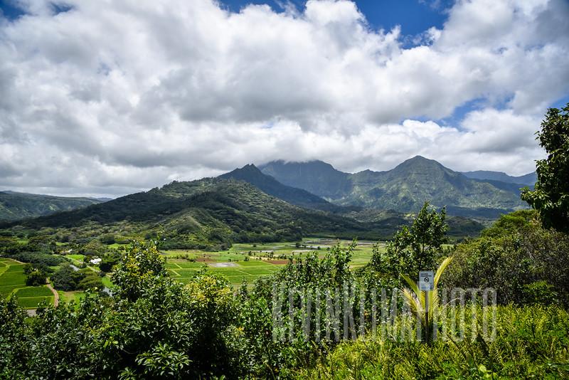 Kauai2017-262.jpg