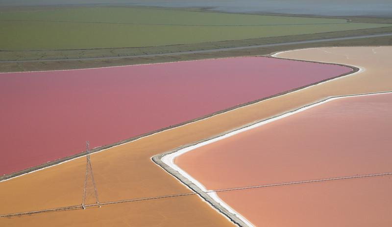 Salt Pond #40