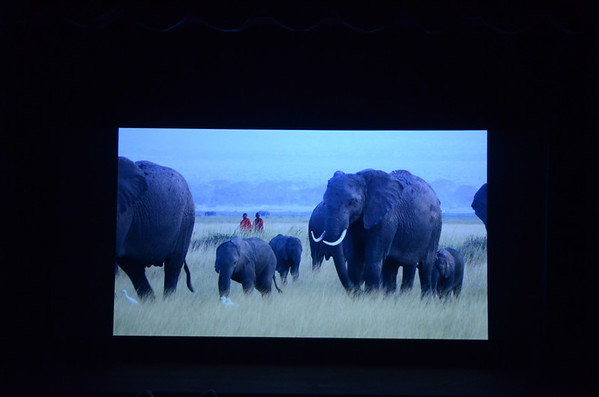 Battle of the Elephants Screening - Aug. 10, 2013