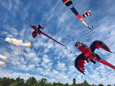 Kites Over Lake Michigan 2017