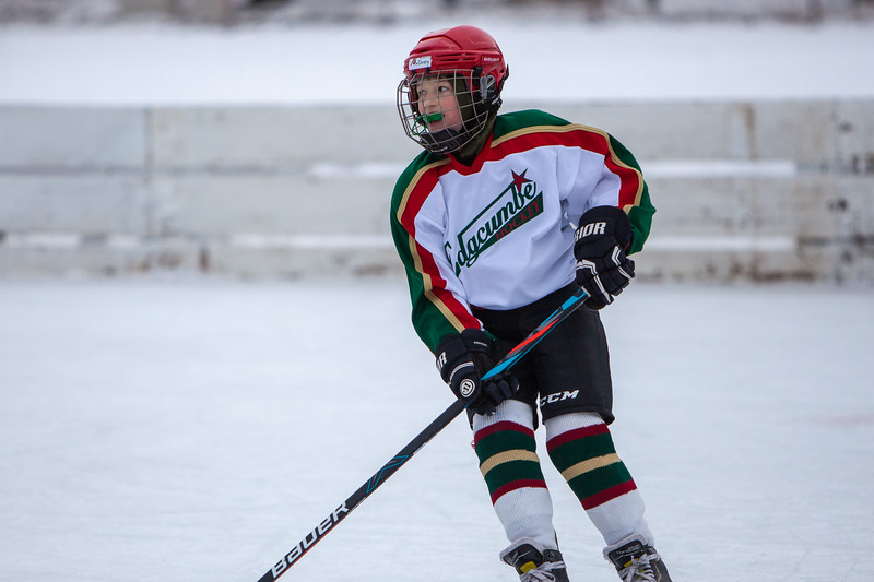 17th Annual - Edgcumbe Squirt C Tourny - January - 2020 - 9193.jpg