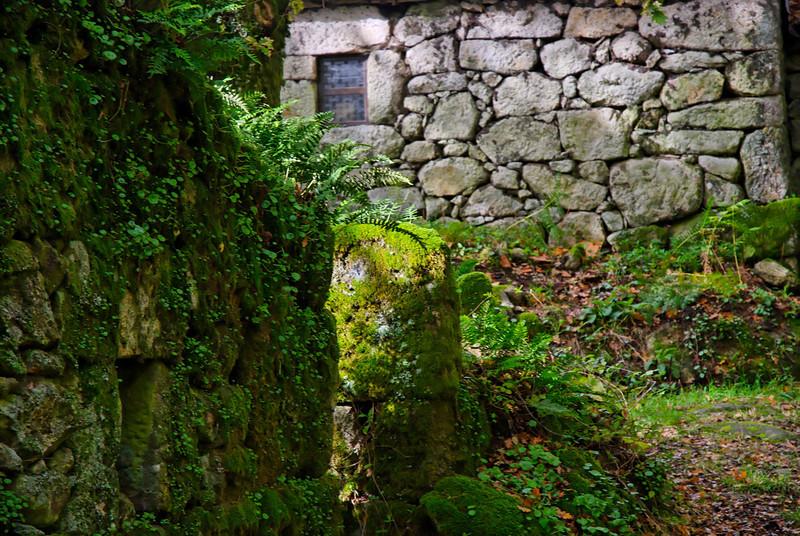 PR6 trilho medieval - 20091122 -  9067.jpg