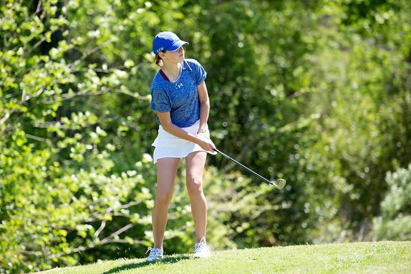 2016-04-06 TCA-Addison Varsity Golf District Tournament