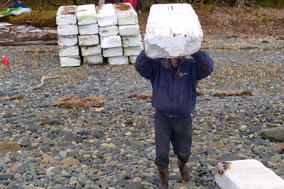 More Styrofoam May 2013, Cynthia Meyer, Chichagof Island, Alaska