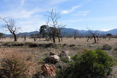 South Spain - I