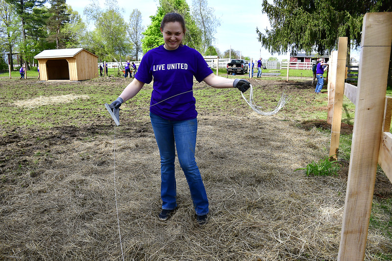 5/17/2019 Mike Orazzi   Staff Andrea Bourke while working with other ABB Industrial Solutions volunteers at Sheppard Meadows as part of the United Way's annual Day of Caring.