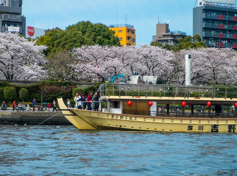 Tokyo Day 3 (167 of 271).jpg
