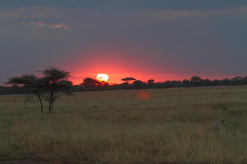 Serengeti Sunrise 2.JPG