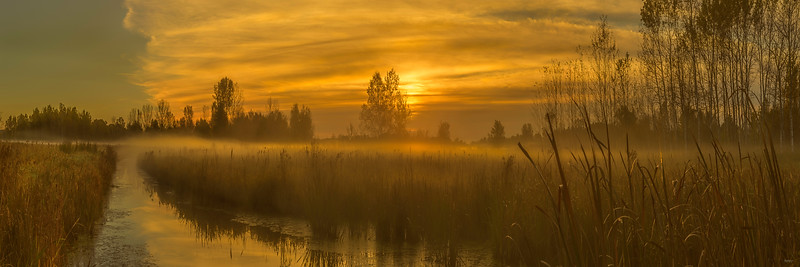 Sunrise on the Marsh