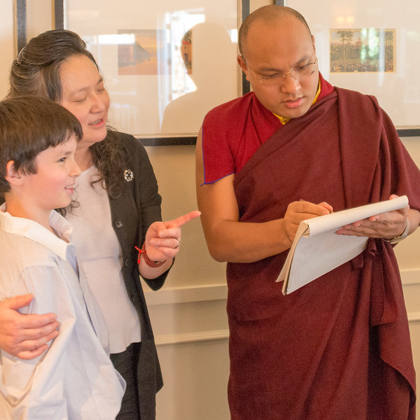 20150318-HCBSS-17th-Karmapa-8012.jpg