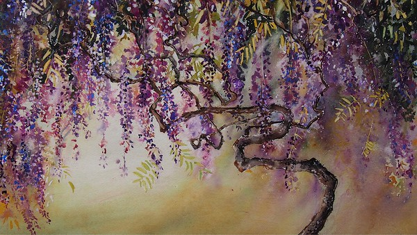Gabrielle Moulding - Canopy of Wisteria, Hiroo