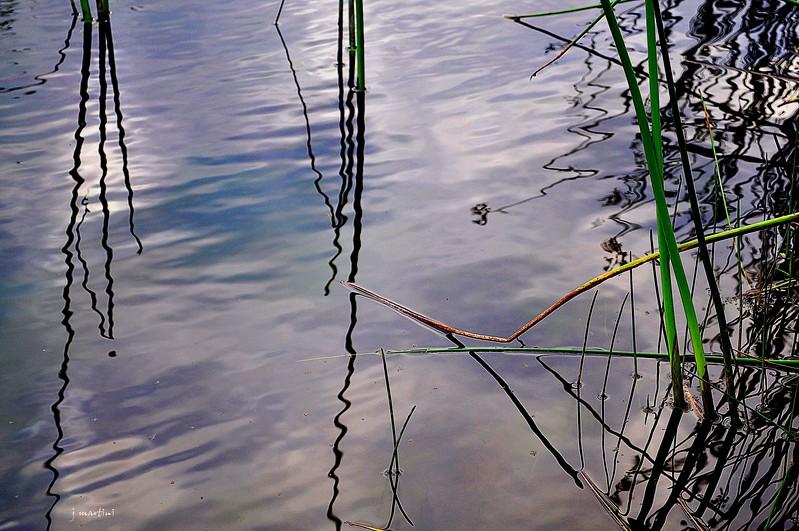 water wiggle 7-15-2012.psd