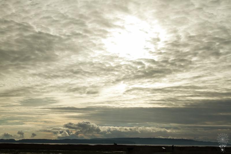 Fir Island 12-04-17 High Res (49 of 71).jpg