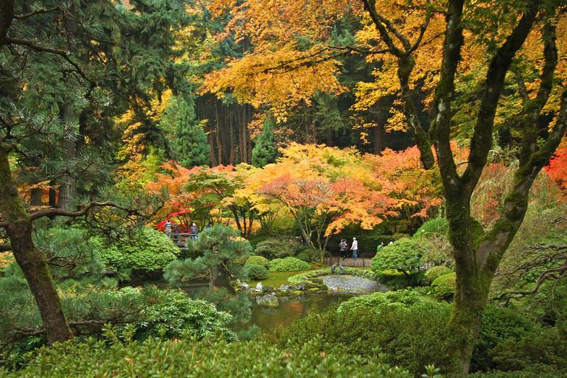 Portland Japanese Garden  11-11-11  3562.jpg
