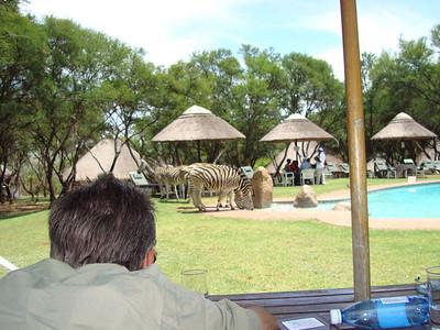 South Africa & Botswana Nov '08