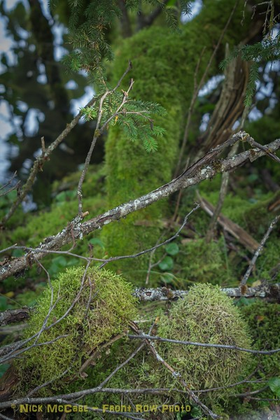 Alaska National Geographic - Days 1 and 2