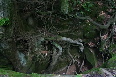 Hocking Hills 20060603