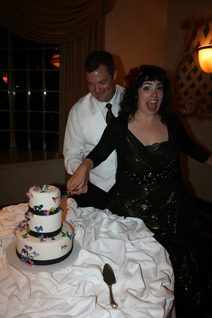 Paul and Nicole's Wedding