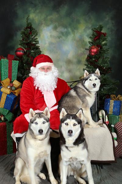 2014 Husky House @ Pet Supplies Plus Hazlet - Pictures with Santa