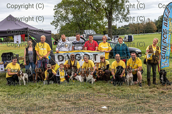 DVGDT at Dogs Unleashed Uttoxeter 14 & 15 Sept 2019